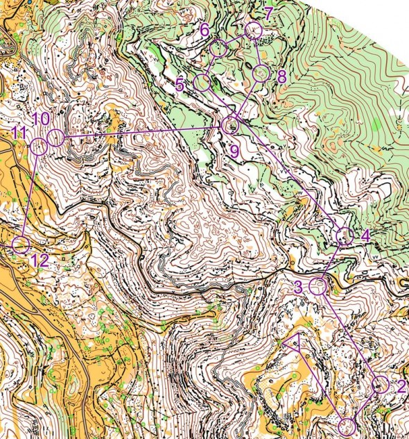 An orienteering map showing elevations and checkpoints