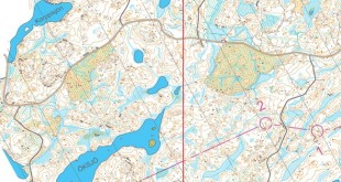finnishchampslong2019_m21e_6_blank_s