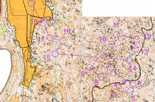 original_middle-men-map-w-course-300-nowhite